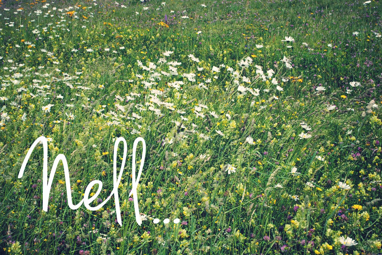 Fleurs megeve copie